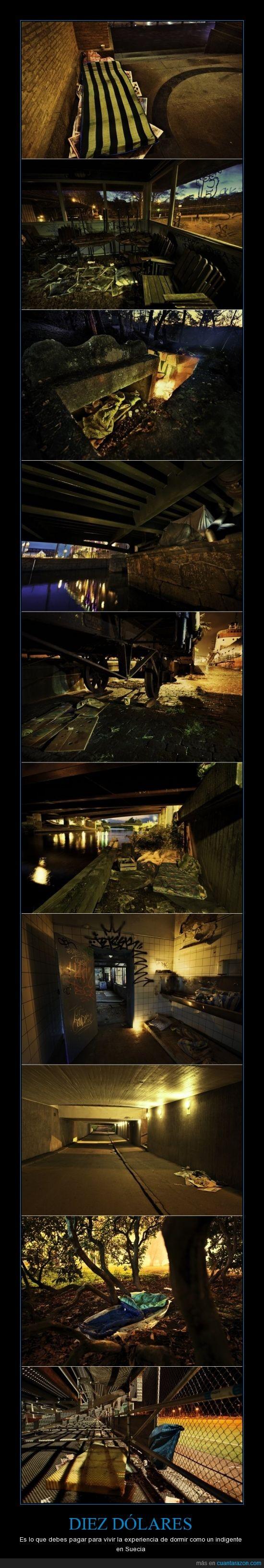 bajo el puente,colcha,dormir,es por caridad,estadio,indigente,parque,sucio,suecia,Why not?