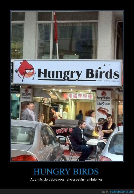 angry,bar,birds,comer,comida,hungry,restaurante