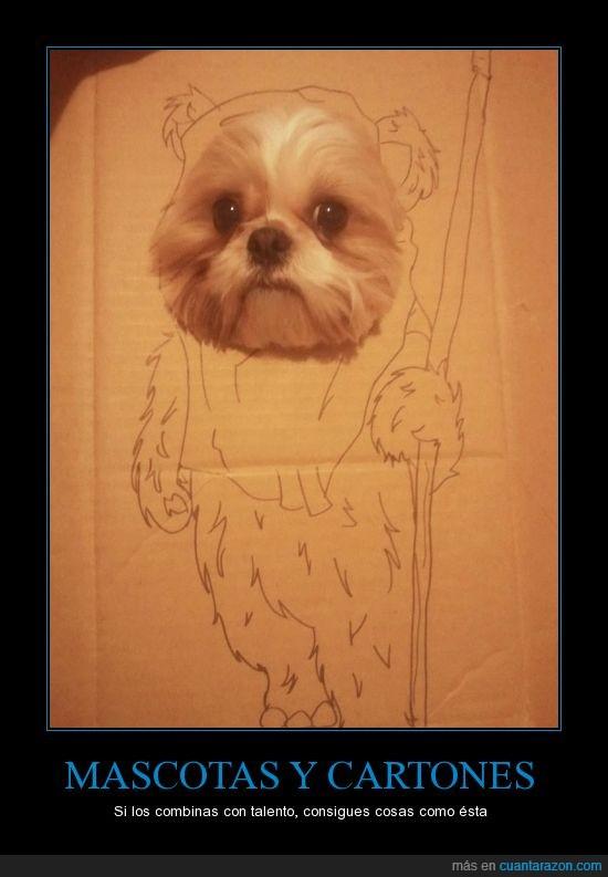 cartón,dibujo,ewok,perro