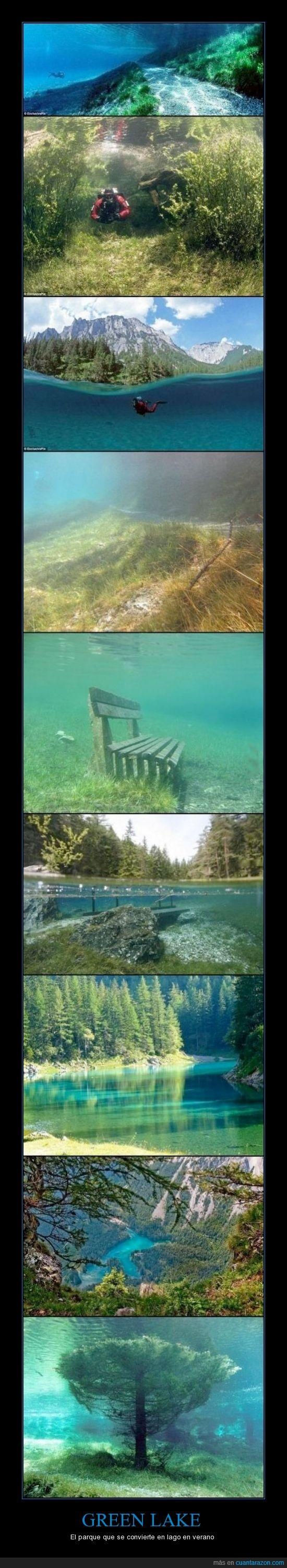 Green lake,invierno,lago,parque,verano
