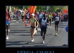 Enlace a VENGA, CHAVAL