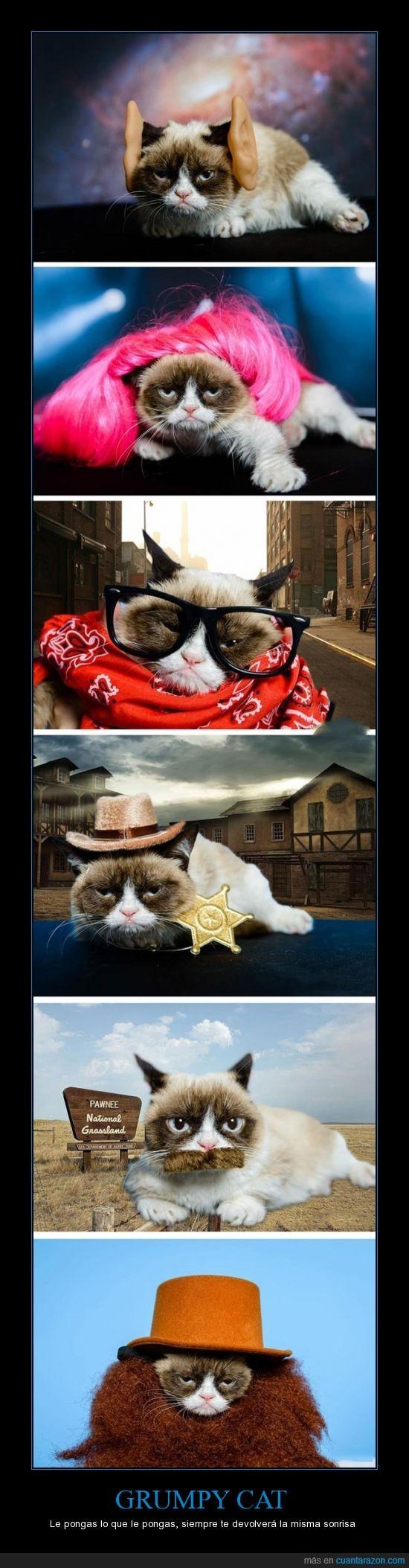 disfraces,grumpy cat,mala hostia