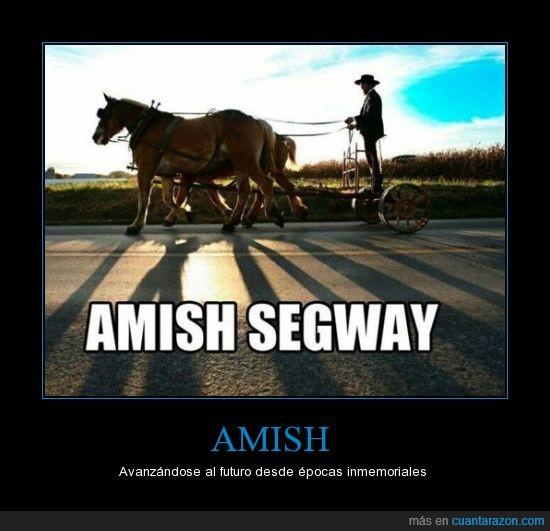 amish,caballos,rarunos,secta,segway
