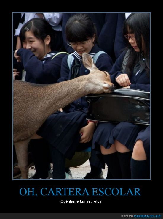 asiáticas,cartera,ciervo,colegialas,secretos