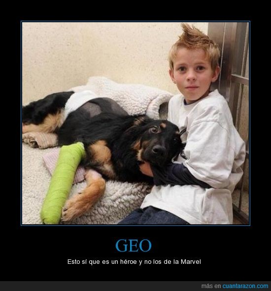 amistad,atropellar,golpe,héroe,increíble,niño,perro,salvar
