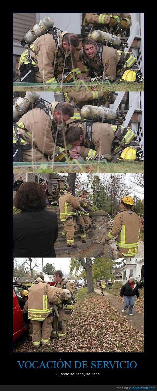 bombero,salvar vida de un perro,vocación de servicio