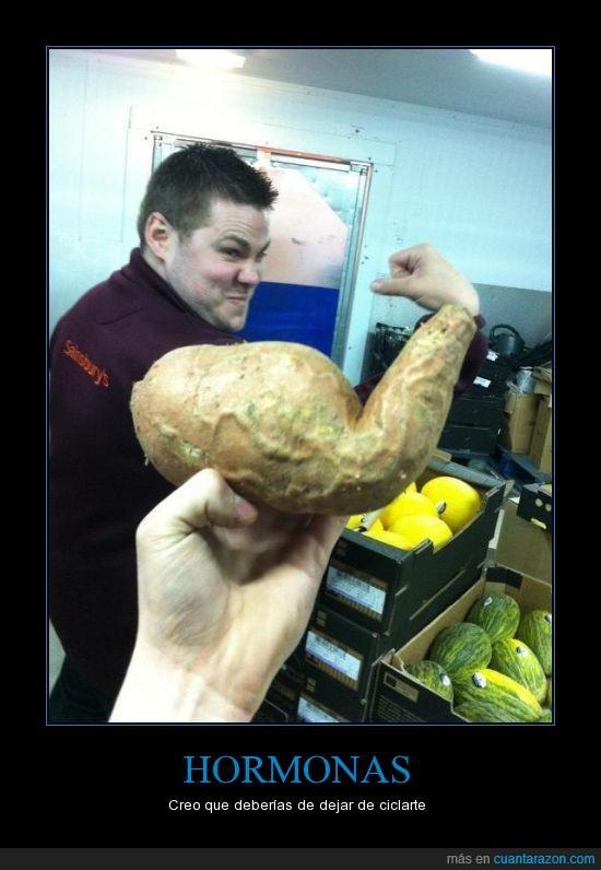 bíceps,fuerza,patata,tuberculo,verdura
