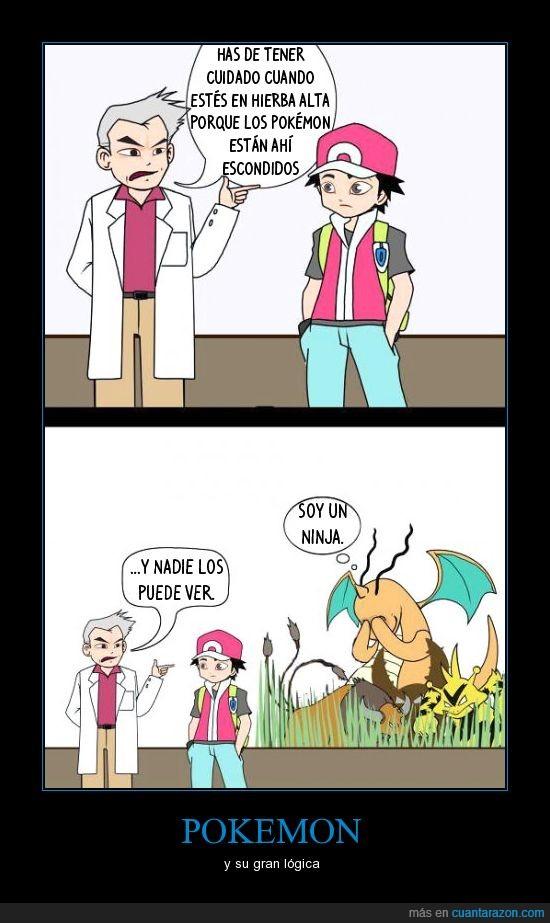 alta,charizard,lógica,ninja,pokemonm hierba
