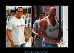 Enlace a THE ROCK