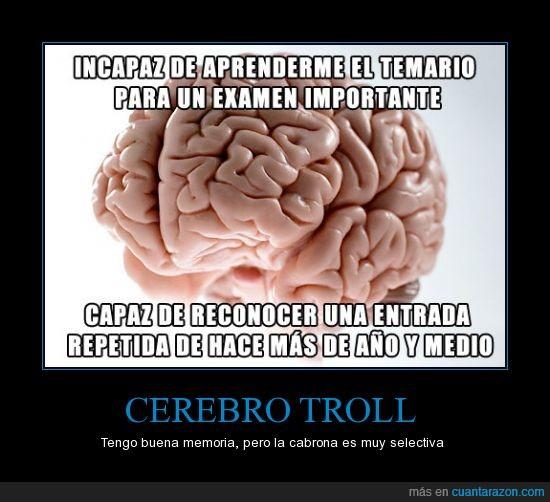 cerebro,entrada,examen,foto,imagen,repetida,repost,temario
