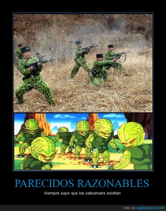 asiaticos,chinos,dragon ball,saibamans o saibamen?,soldados