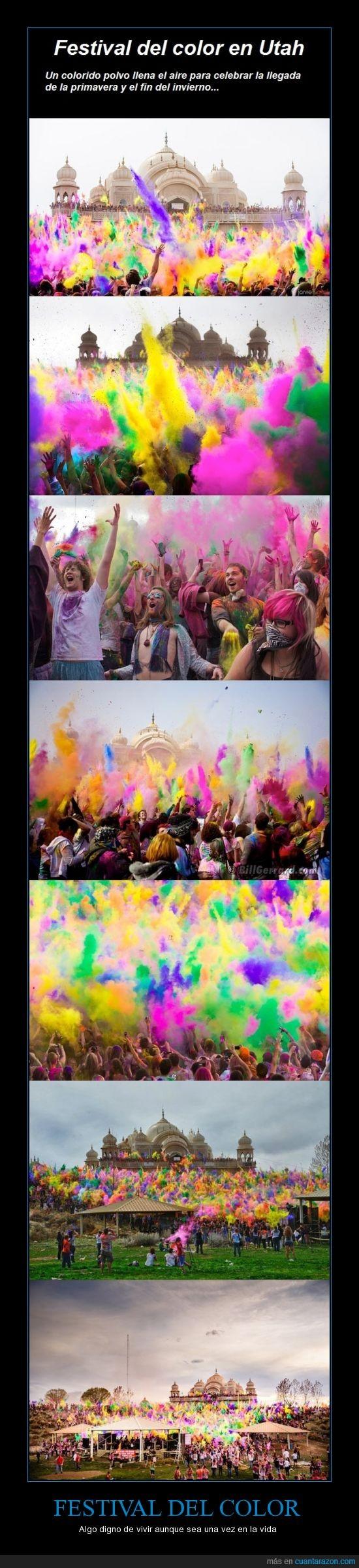 color,final,holifestival,invierno,pintura,primavera