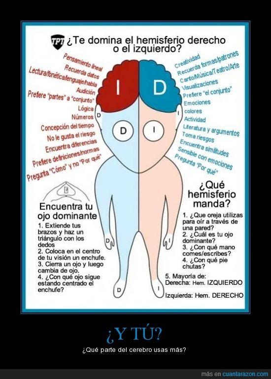 hemisferio,lado,parte