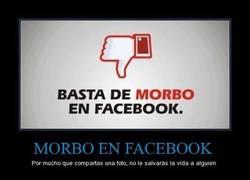 Enlace a MORBO EN FACEBOOK