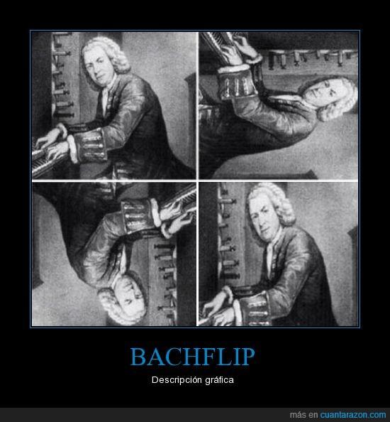 bach,backflip,descripción gráfica