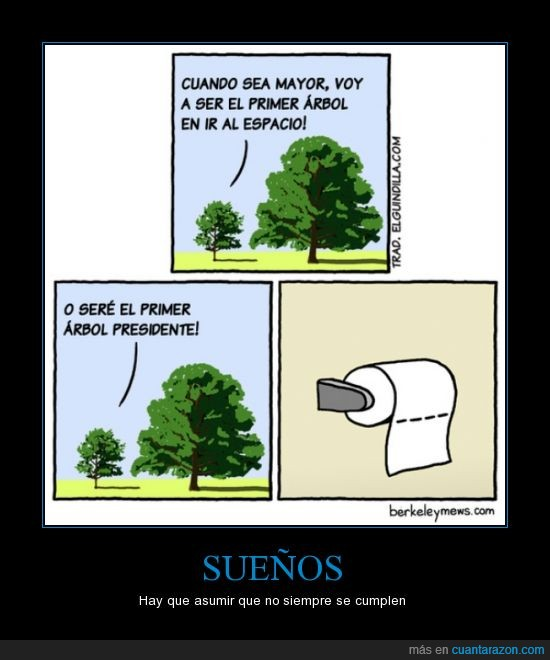 arbol,chasco,futuro,papel,papel de wc