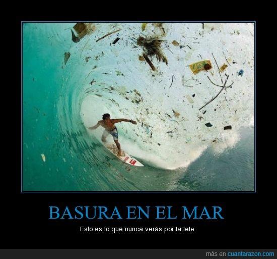 basura,contaminacion,mar,oceano,suciedad,surf,surfero,surfista
