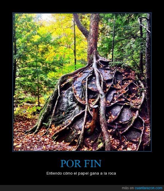 árbol,montaña,papel,piedra papel tijeras,roca