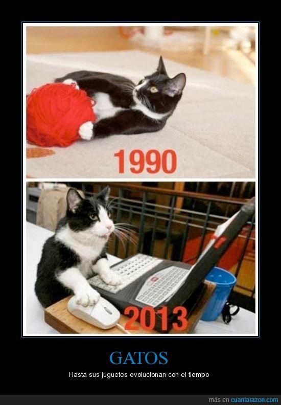 ahora,antes,gato,jugar,ordenador