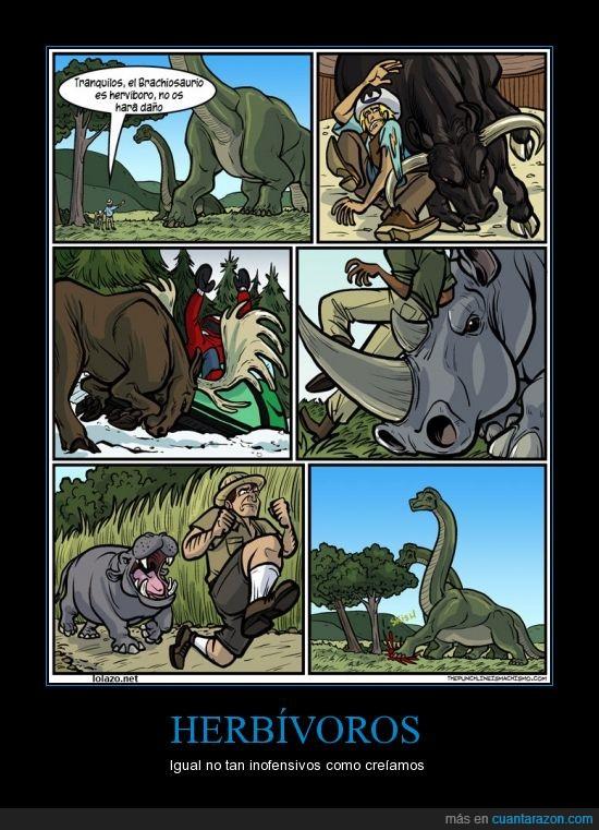 alce,dinosaurio,el del toro se lo merece,herbivoros,hipopotamo,inofensivos tu madre
