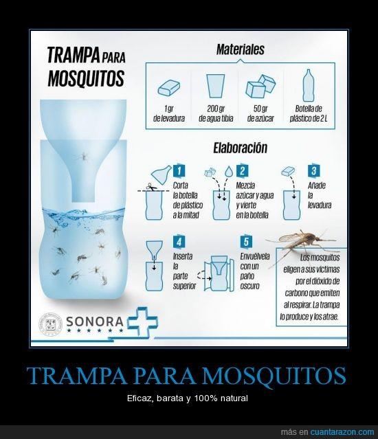 barato,mosquitos,solución,trampa