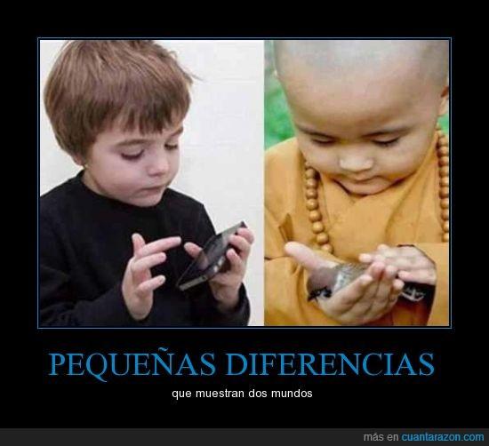acariciar,budista,movil,niño,pajaro,pequeño,smartphone