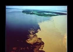 Enlace a AMAZONAS VS. RÍO NEGRO