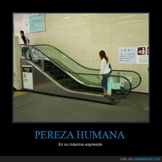 escaleras,humano,mecanicas,pereza,vago