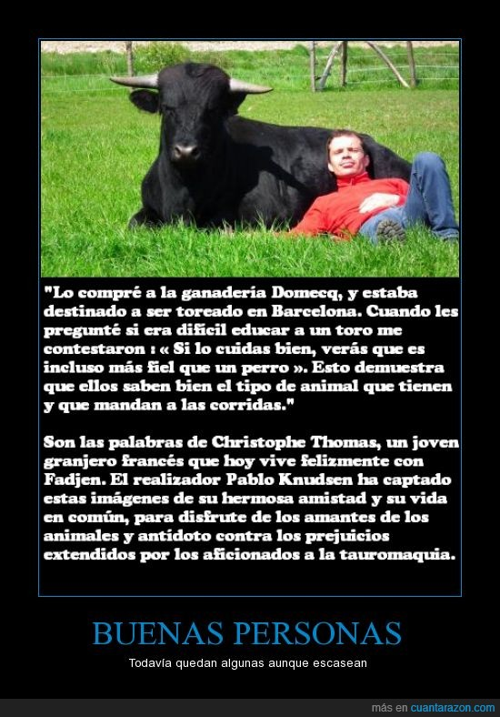 amistad,animal,buena gente,Christophe Thomas,matar,T.T,toro