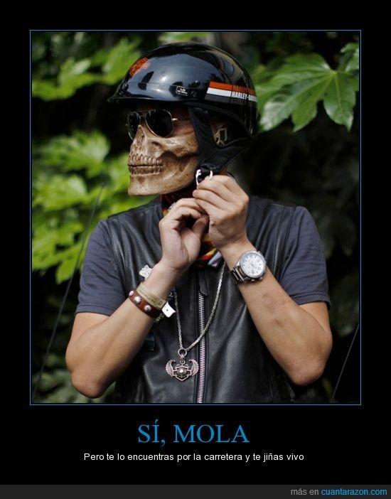 calavera,casco,moto,muerto,parece,real,susto