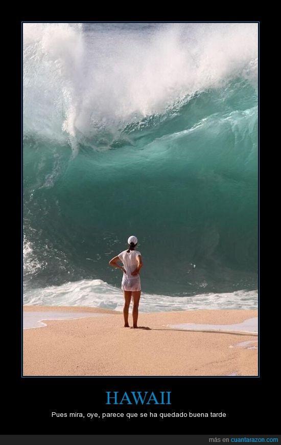 buena tarde,comedia,Hawaii,humor,ironía,olas grandes