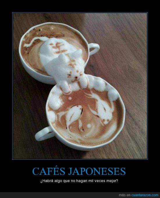 cafe,espuma,gato,leche,nata,peces,pez