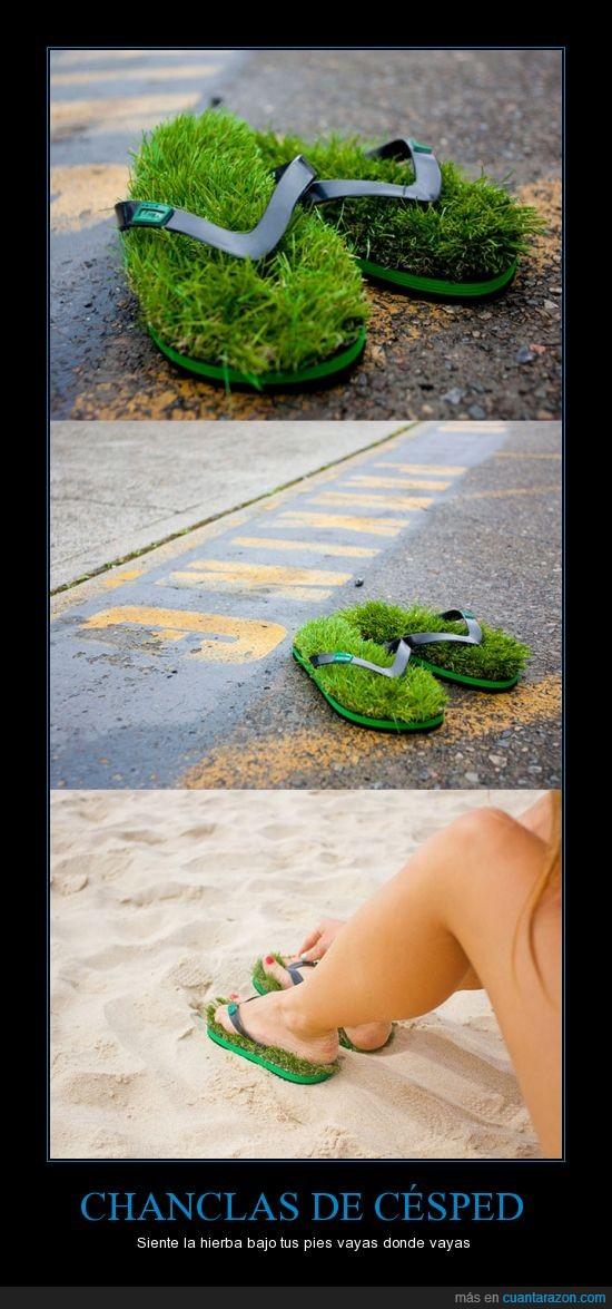cesped,chancla,flip flop,flipflop,hierba,sandalia,zapatilla
