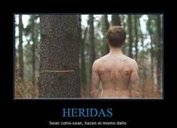 Enlace a HERIDAS