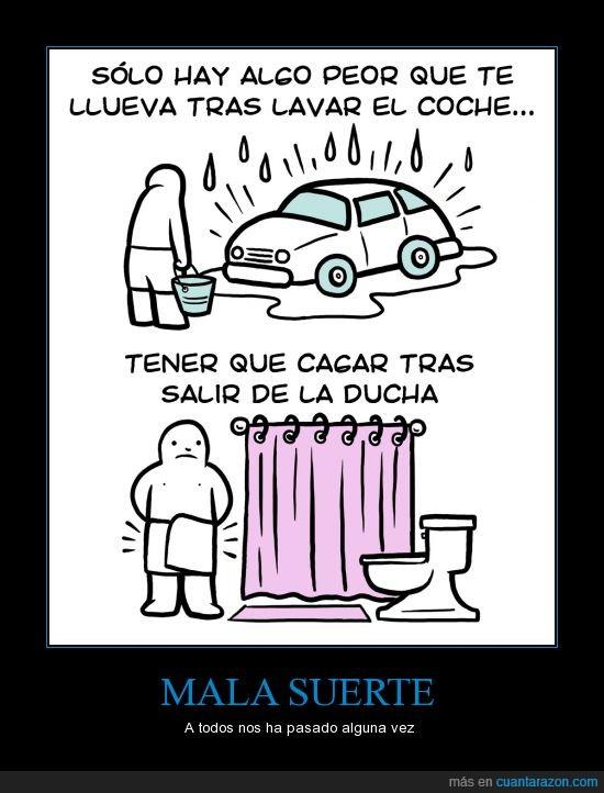 cagar,coche,ducha,lavar,lluvia,water