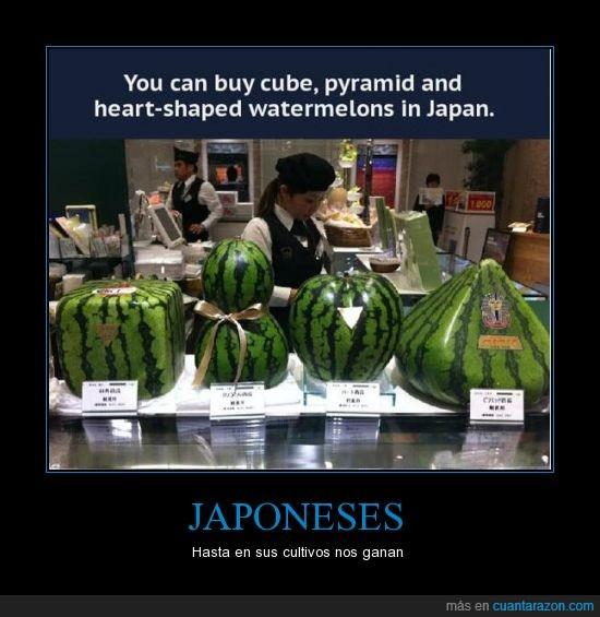 forma,fruta,japon,piramide,sandia