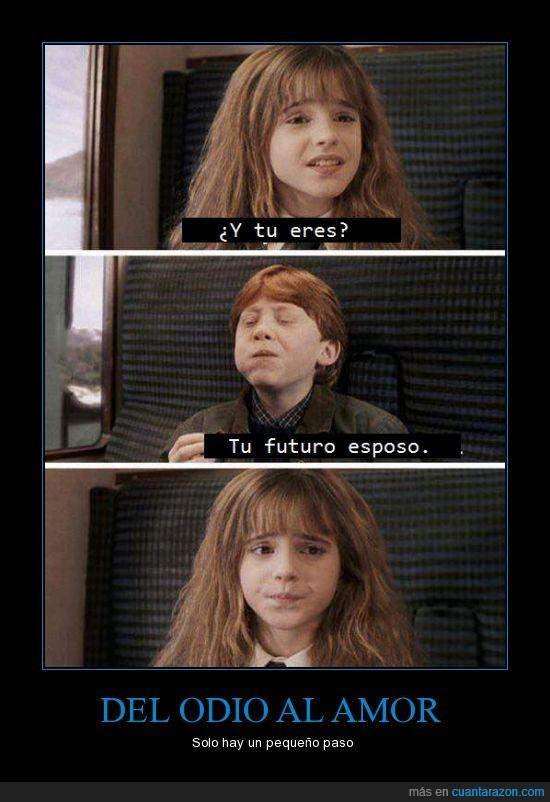 Harry Potter,Hermione Granger,inicio de la aventura,Ron Weasly,tren,una de las primeras escenas