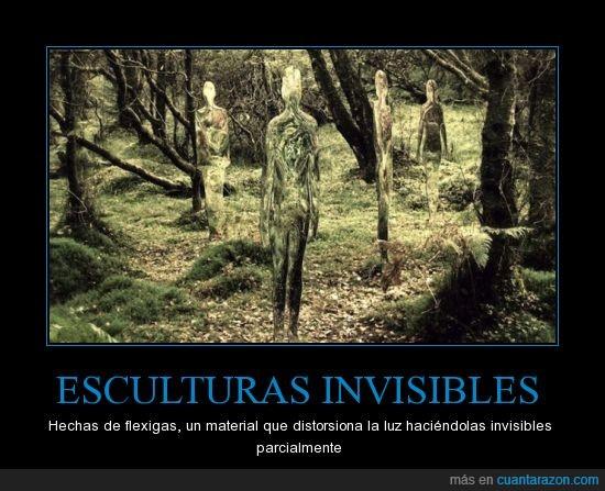 bosque,escultura,invisible,persona