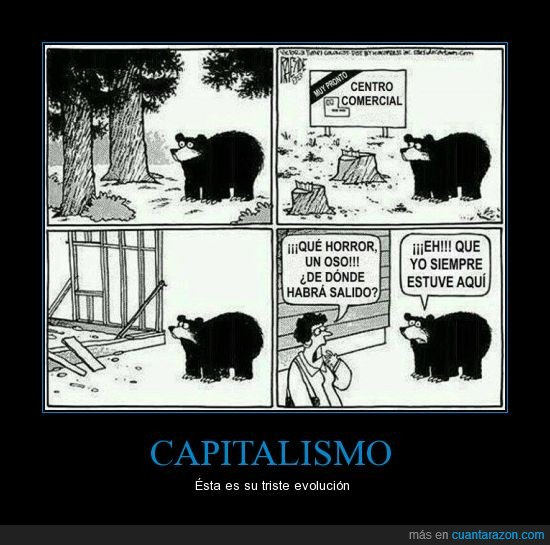 capitalismo,evolución,oso,supermercado