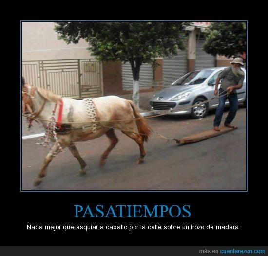 caballo,esquiar,Pasatiempos