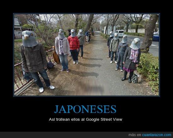 careta,esos japoneneses estan locos locos,japan its different,japón,paloma,ugly americans