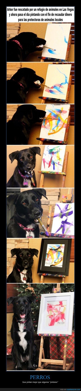 artista,bien,las vegas,perros,pintar,pintores,refugio