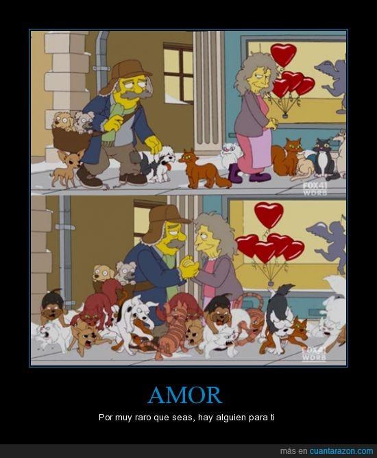 amor,loca de los gatos,loco de los perros,simpson