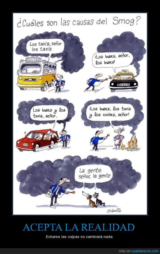 causa,causas de contaminacion,gente,humano,humo,perro,smog