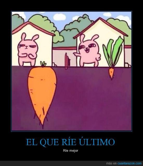 aparentar,debajo,grande,hoja,tierra,zanahoria