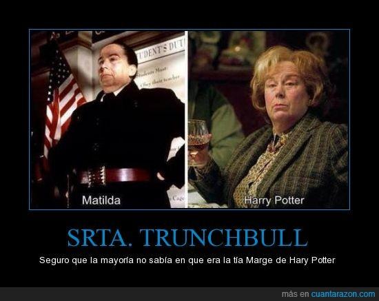 harry potter,matilda,tia,tía Marge Dursley,trunchbull