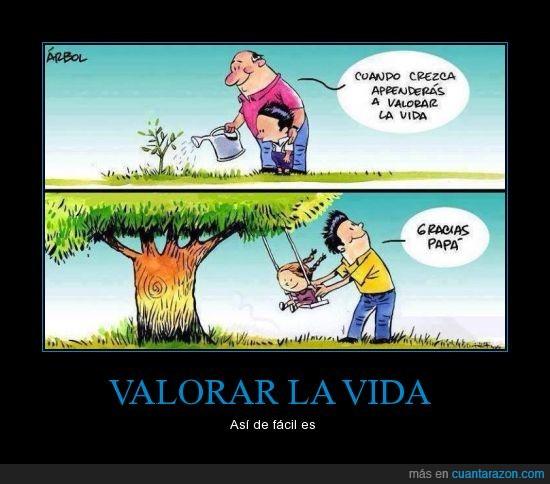 aprender,arbol,cielo,columpio,crecer,hijo,padre,valorar,vida