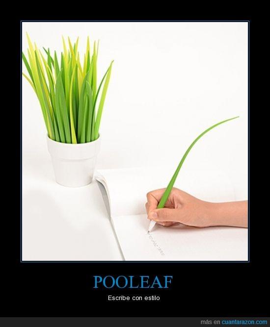 boligrafo,cesped,escribir,hoja,lapicero,planta,pluma,pooleaf