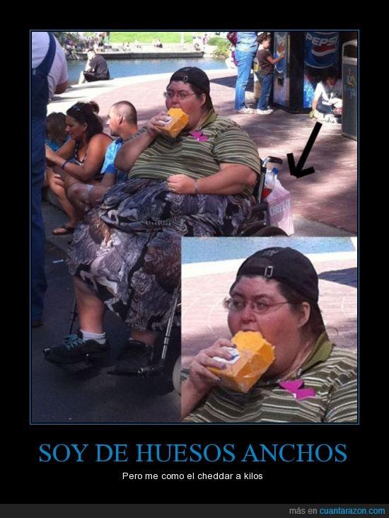 cheddar,obesidad mórbida,queso,varias