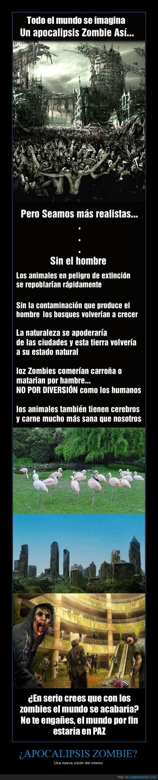 Apocalipsis,fin del mundo,humanos,muertos,realidad,reflexion,zombie